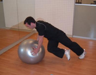 Stability Ball Cross Body Mountain Climber Exercise