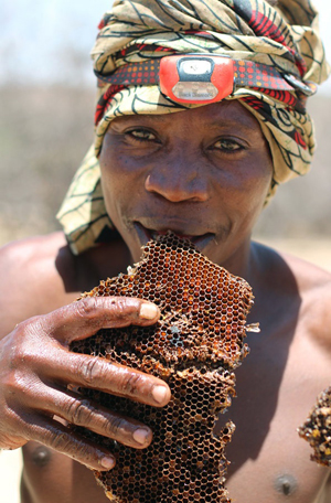 The Hadza love their honey. Picture source.