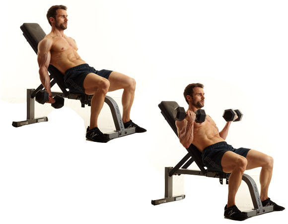 6-incline-db-curl