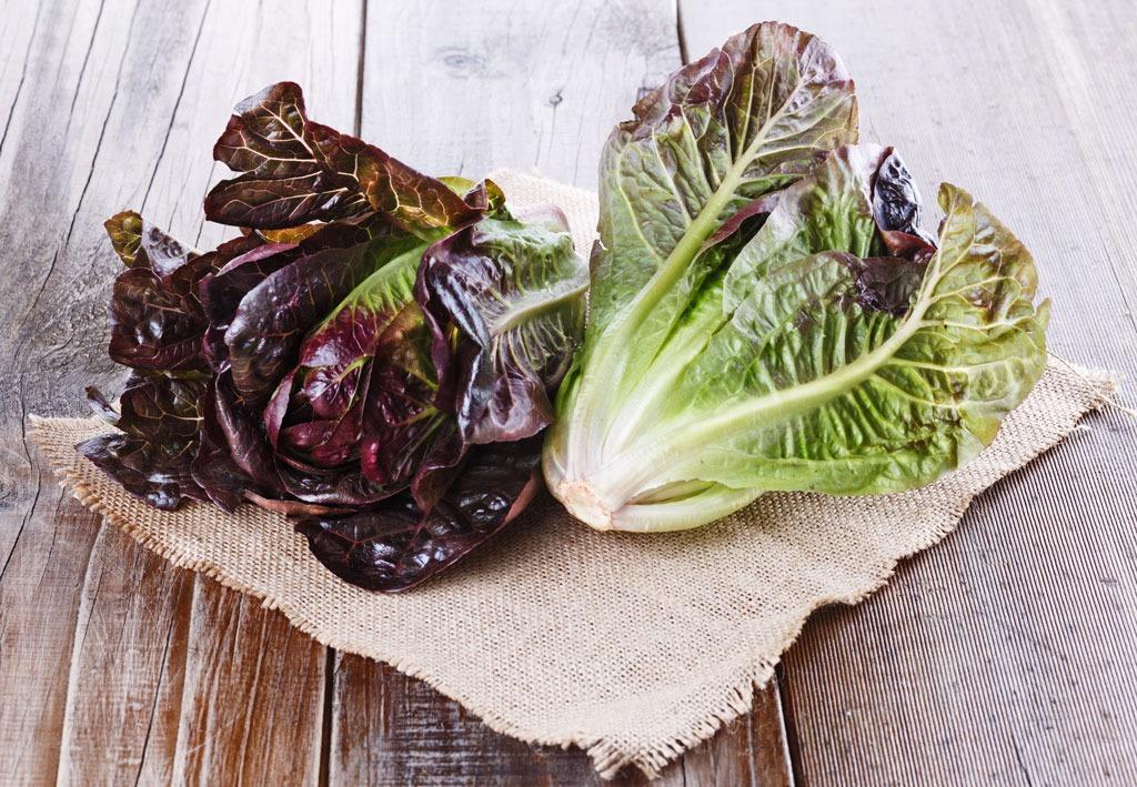 leaf_lettuce-healthier-than-kale