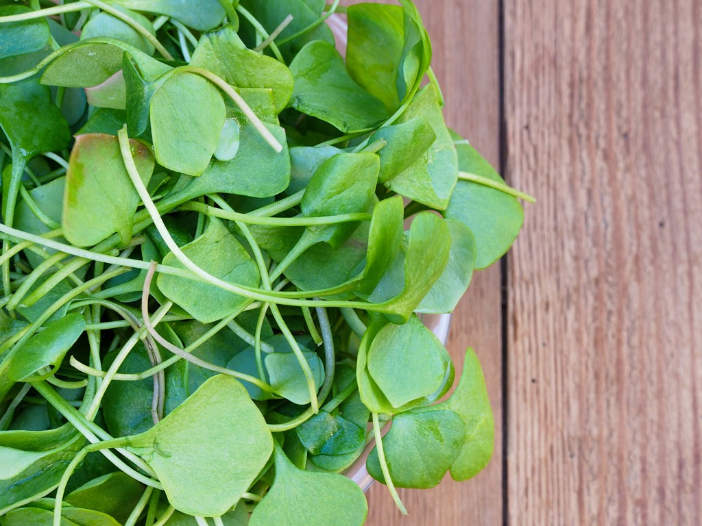 watercress-healthier-than-kale
