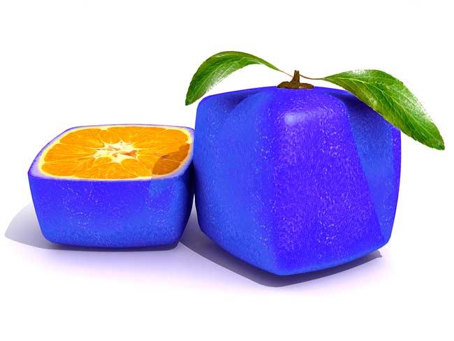 bigstock-Sliced-Blue-Citric-Fruit-7069538