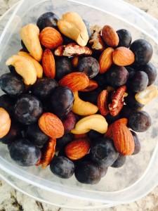 Fresh Blueberry Trailmix