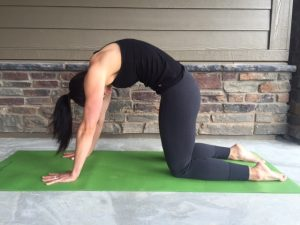 the top 8 yoga stretches for back pain relief  early to rise