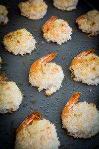 coco shrimp 3