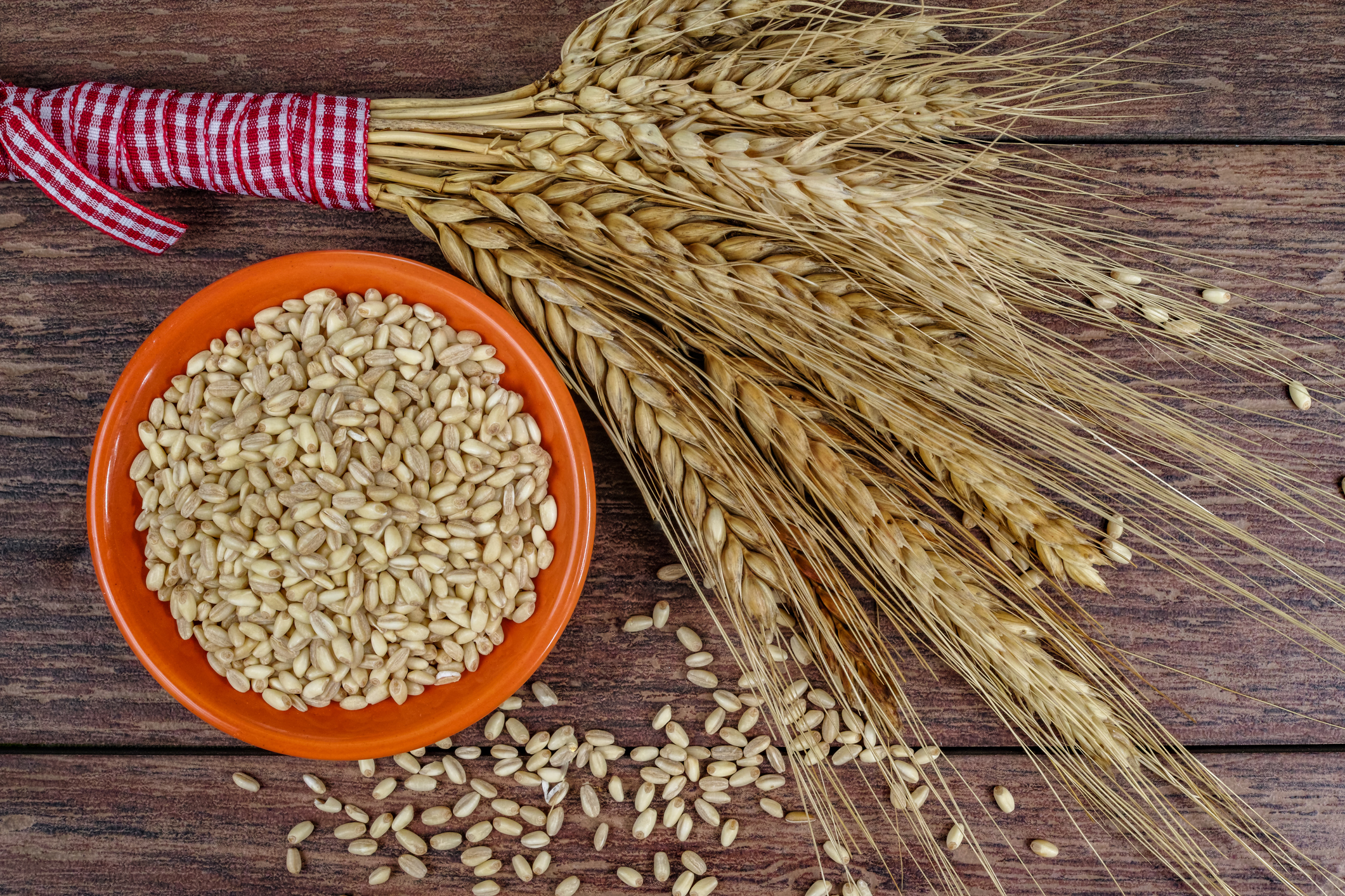 Whole Grains 101: The Miracle Food