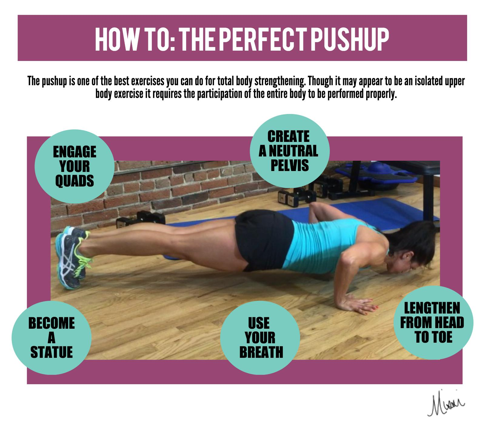 Breakdown of the Perfect Pushup
