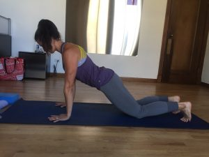 chaturanga yoga pose modification