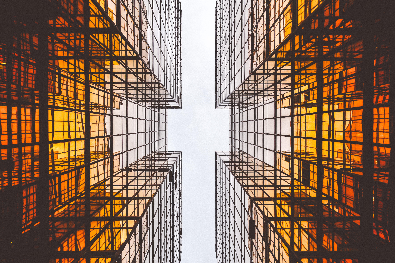 How Billion-Dollar Companies Plan for the Future