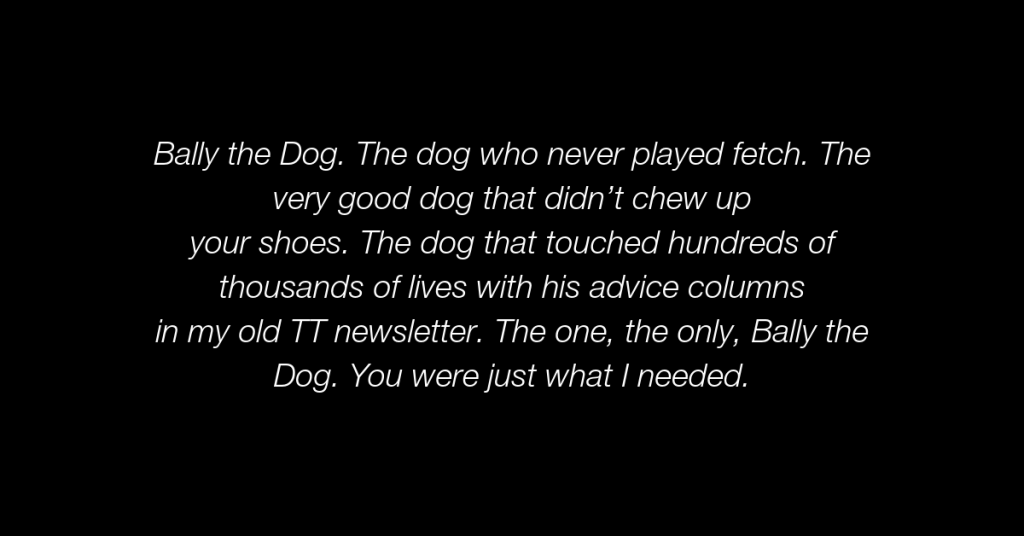 078 - 7 Life Lessons from Bally the Dog