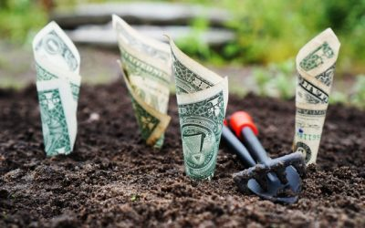 The 4 Universal Laws of Wealth Creation (Follow These or Stay Broke)